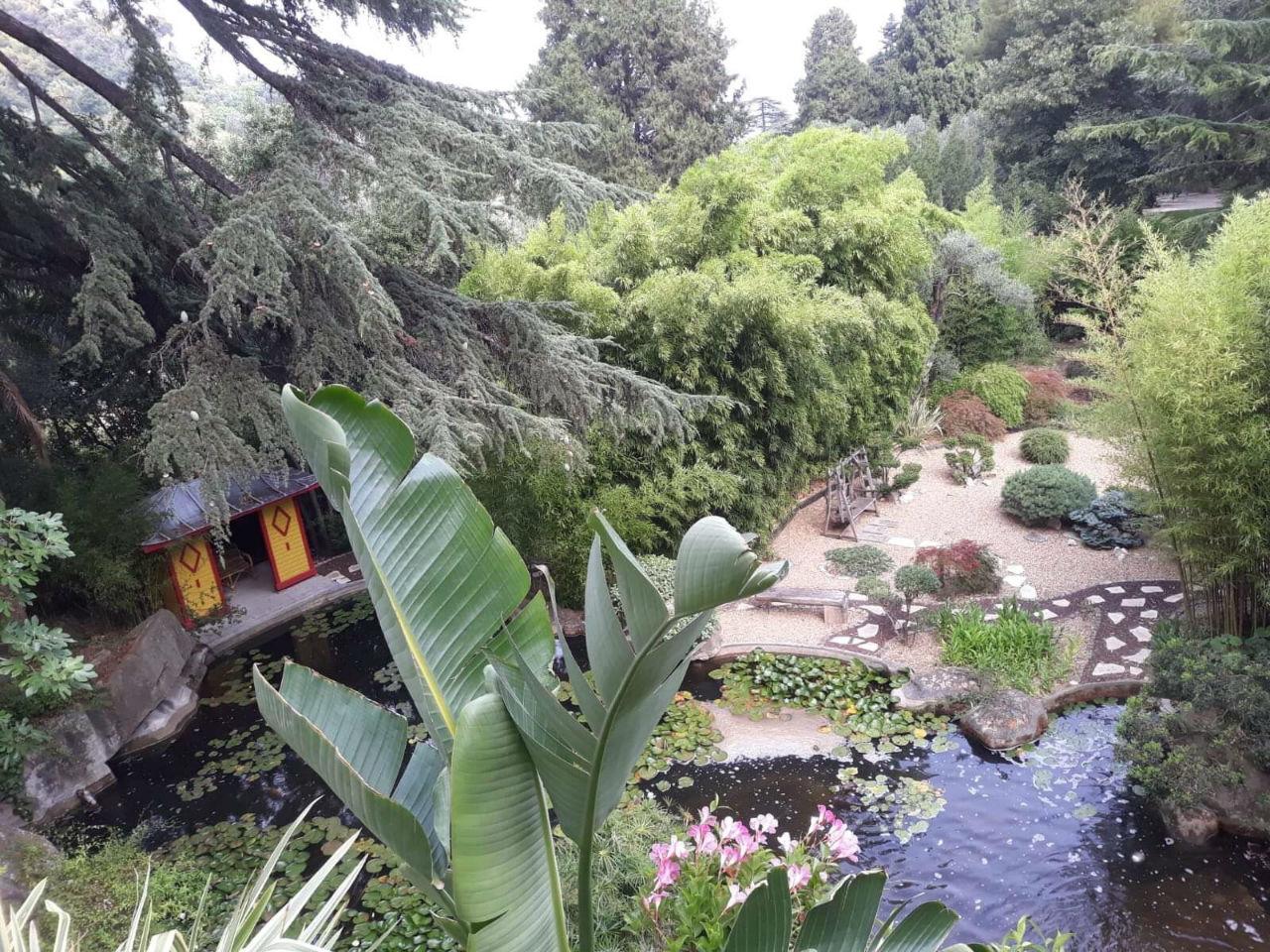 Comment Créer Un Jardin Japonais ? à Plante Pour Jardin Japonais
