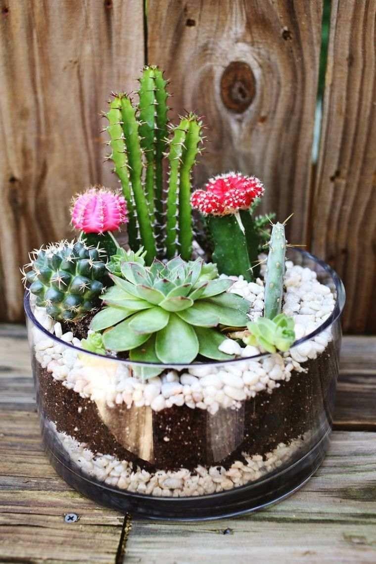 Comment Faire Un Jardin De Cactus Exemple-Petit-Recipient ... avec Jardin Cactus Miniature