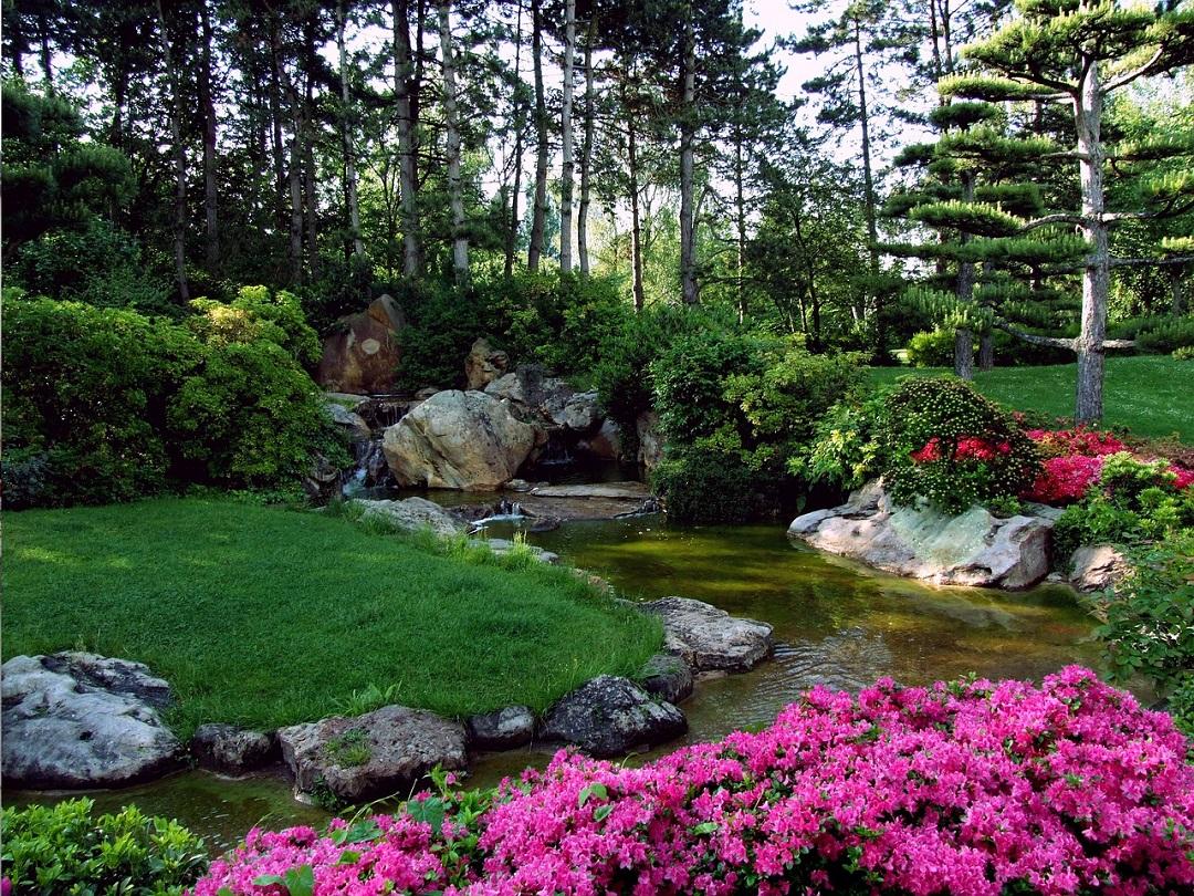 Comment Faire Un Petit Jardin Zen Et Japonais ? destiné Plantes Pour Jardin Japonais