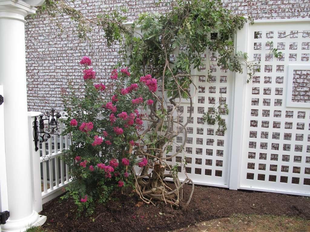 Comment Installer Un Treillage Dans Un Jardin ? à Croisillon Jardin