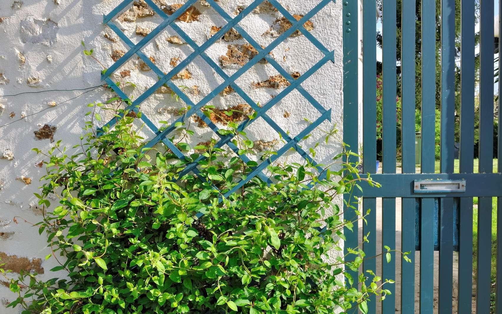 Comment Installer Un Treillage Dans Un Jardin ? concernant Croisillon Jardin