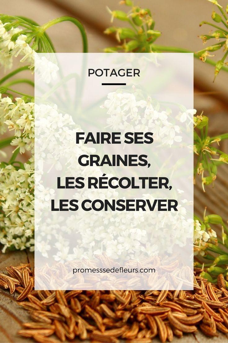 Comment Jardiner Sans Eau... | Tous Nos Livres - L'écologie ... destiné Revue Jardin Facile