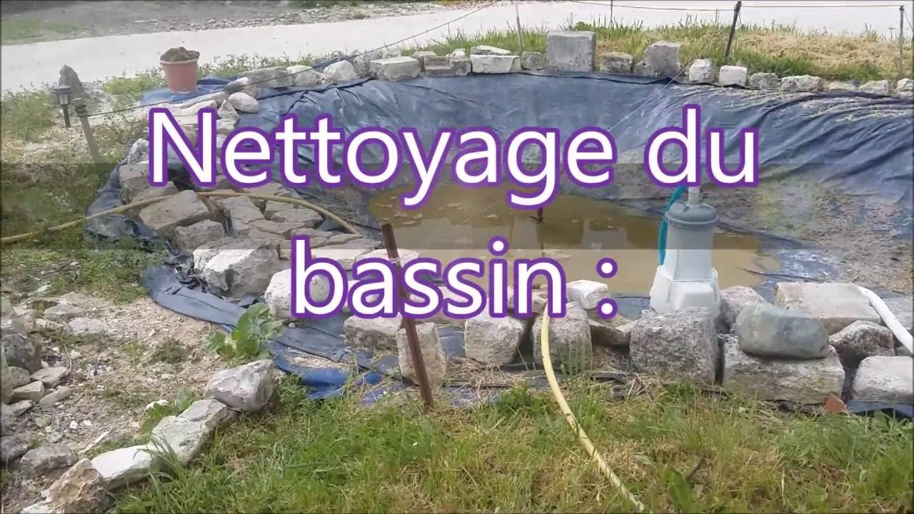 Comment Nettoyer Un Bassin : Explication tout Entretien D Un Bassin De Jardin