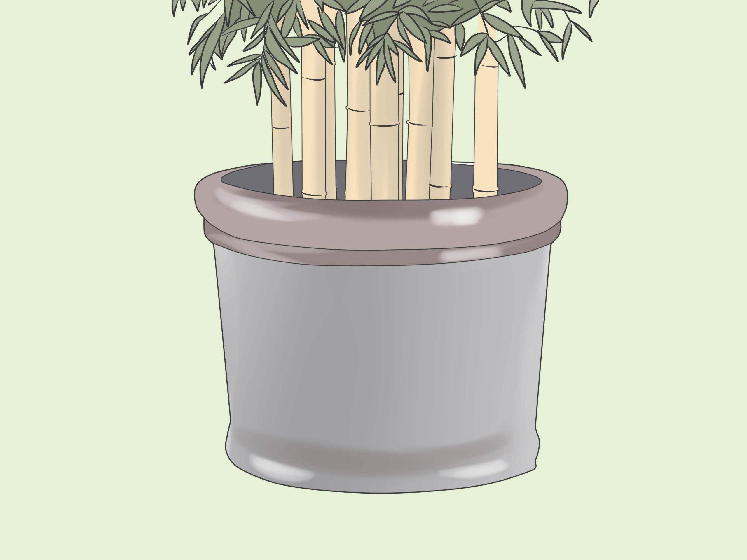 Comment Se Débarrasser Des Bambous: 8 Étapes serapportantà Comment Eliminer Les Bambous Dans Un Jardin