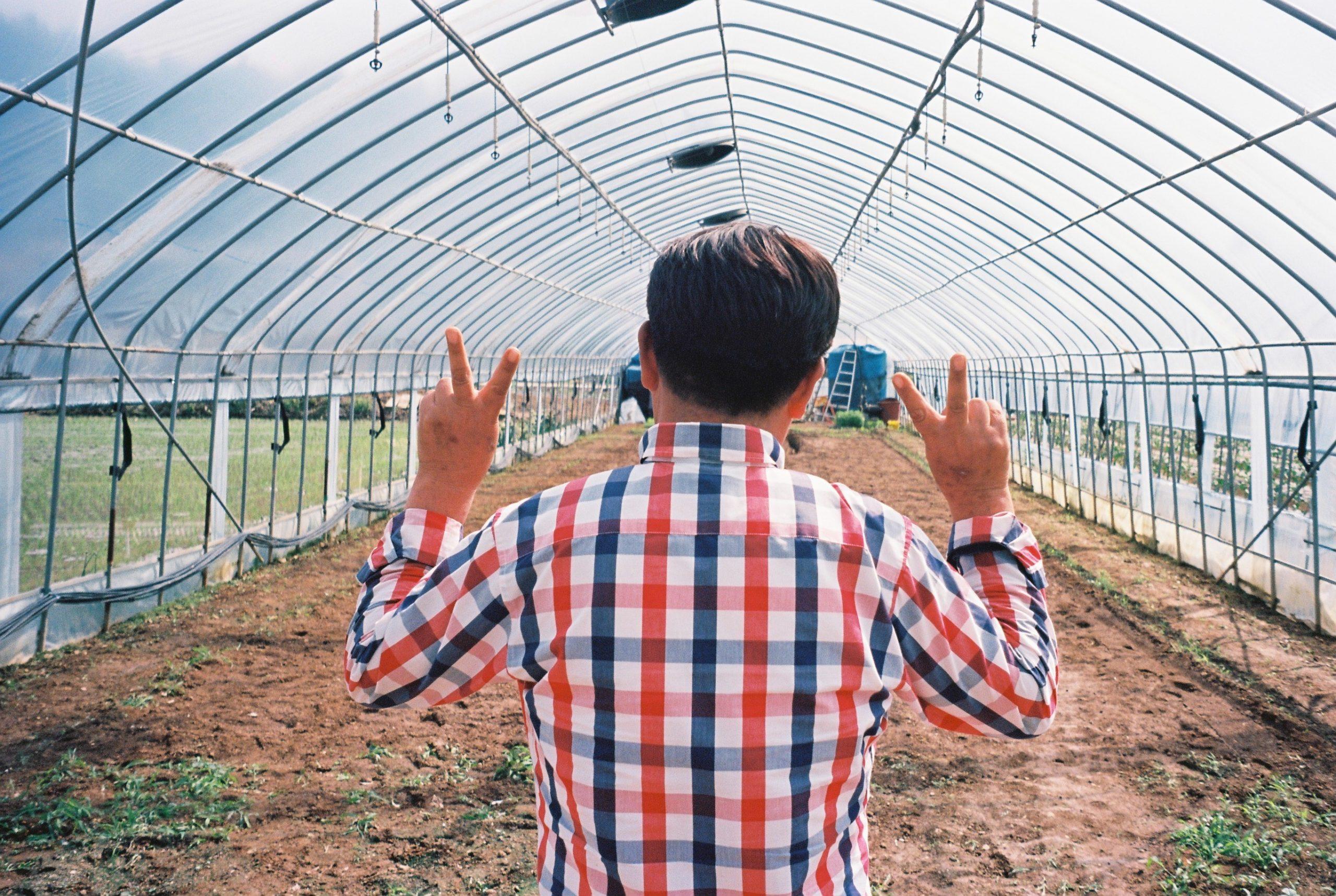 Concevoir Une Serre Tunnel encequiconcerne Fabriquer Une Serre De Jardin