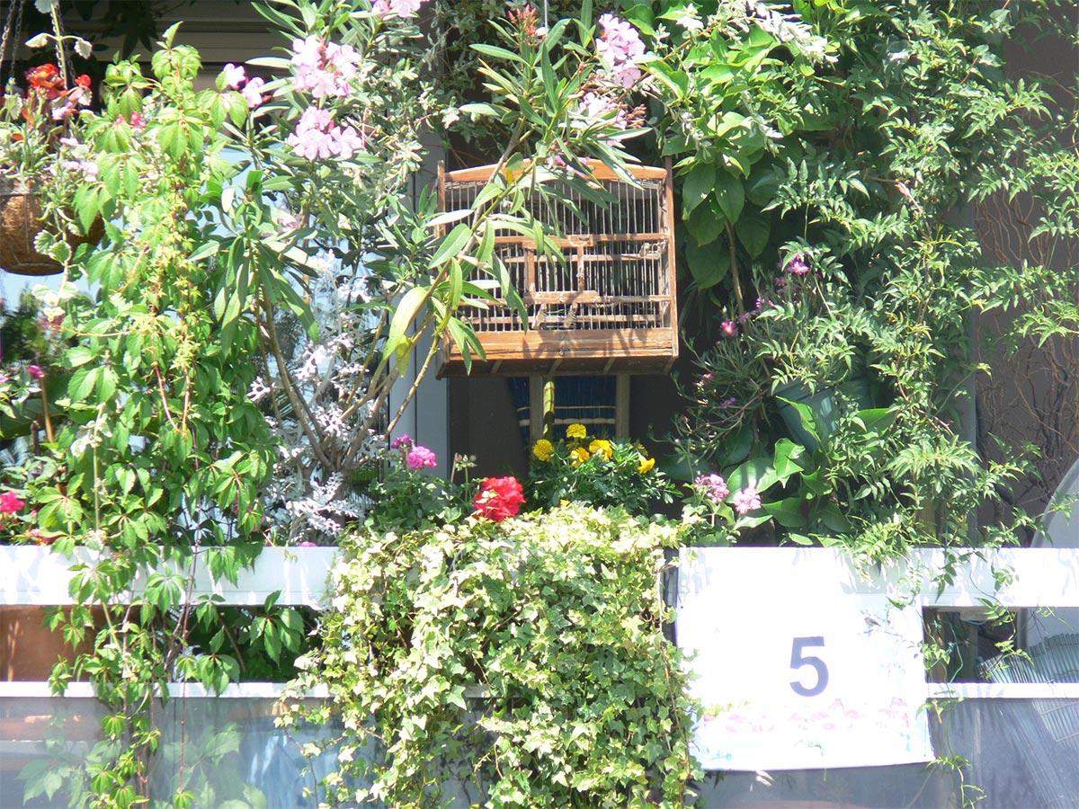 Concours Des Balcons Et Jardins Fleuris : Les Inscriptions ... dedans Hotel Des Jardins Vincennes