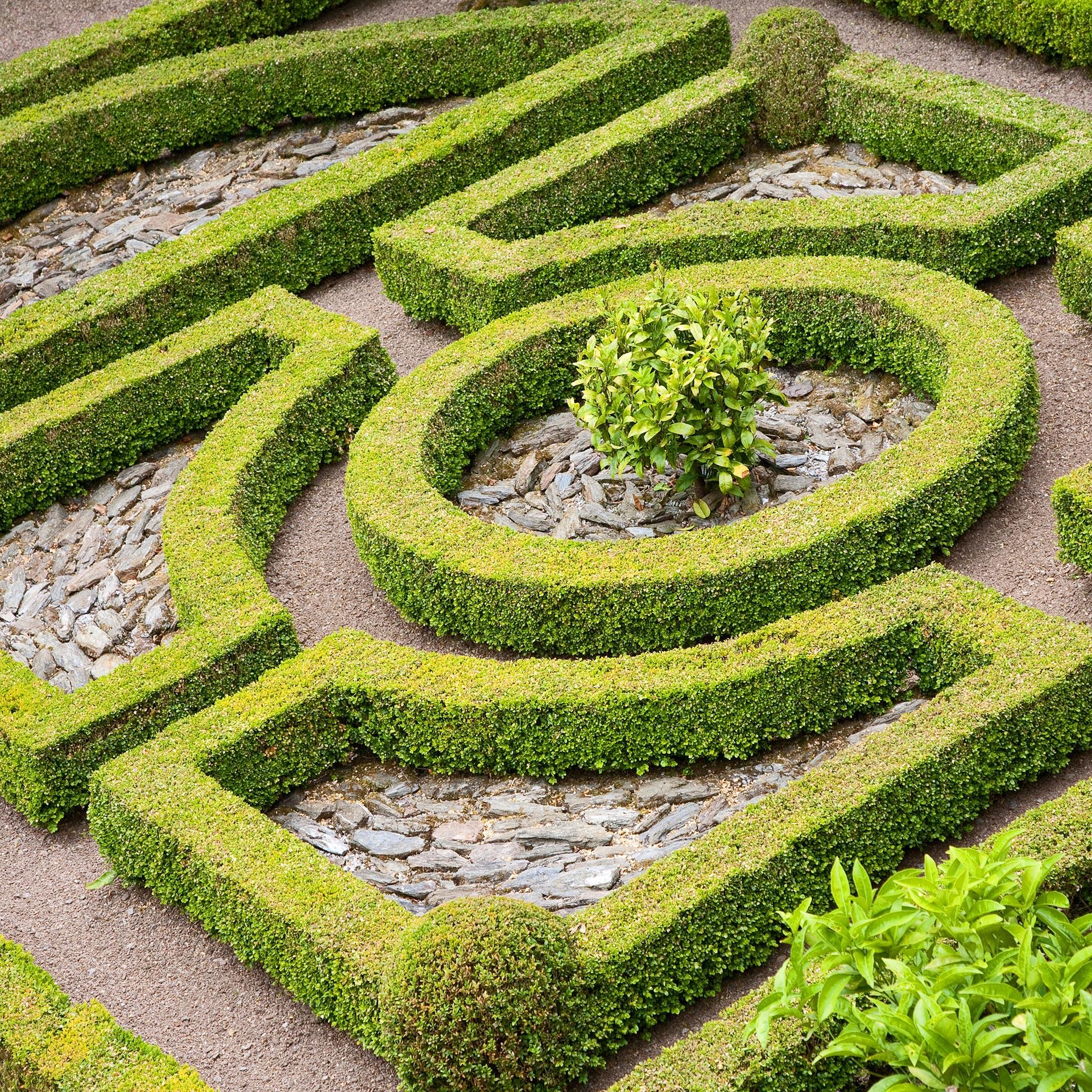 Conférence Au Cœur Des Savoirs : Les Jardins D'andré Le ... tout Hotel Des Jardins Vincennes