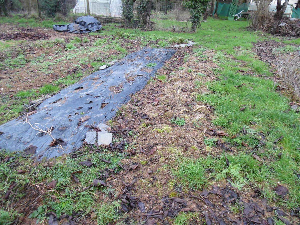 Conseils Pour Fevrier - Le Blog Du Jardinier Fainéant... avec Bache Mauvaise Herbe Jardin