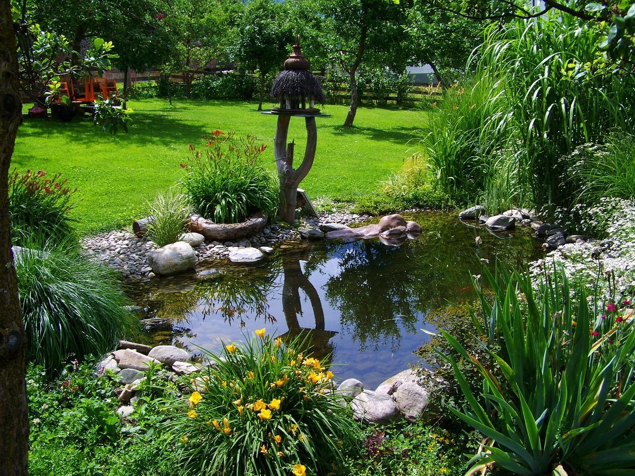 Construire Un Bassin Au Jardin : C'est Facile - City Plante ... dedans Construire Un Bassin De Jardin