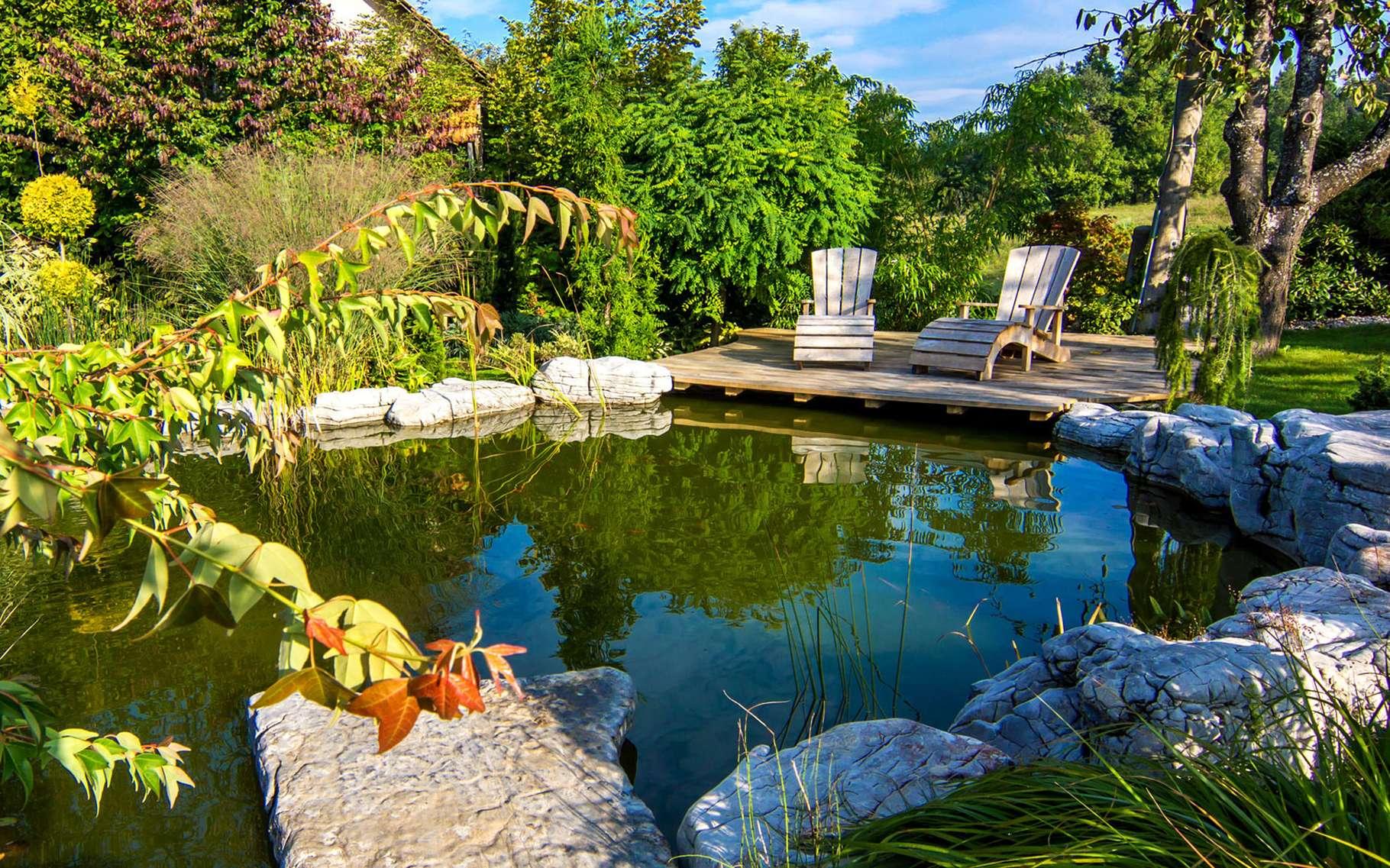 Construire Un Bassin De Jardin   Dossier concernant Construire Un Bassin De Jardin