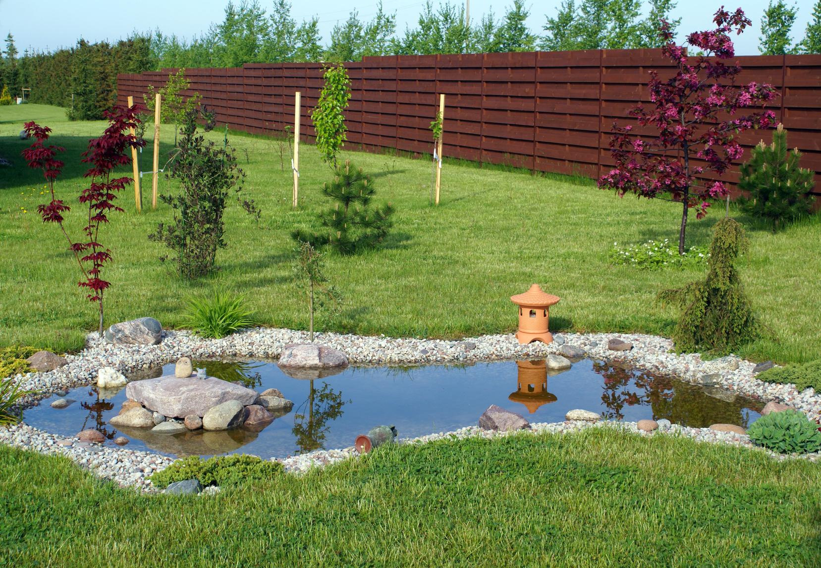Construire Un Bassin De Jardin En 7 Étapes - Le Tuto De Mon ... encequiconcerne Plante Bassin De Jardin