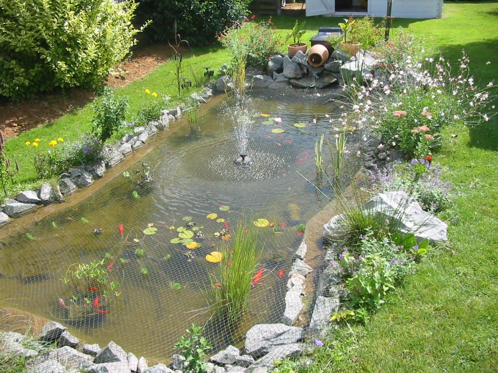 Construire Un Bassin Poisson Au Jardin, Photo Bassin De Jardin avec Construire Un Bassin De Jardin