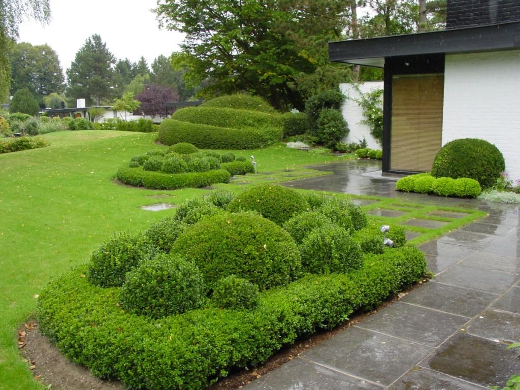 Côté Taille : Spécialistes De La Taille De Haies, Arbustes ... destiné Aménagement Jardin Hainaut