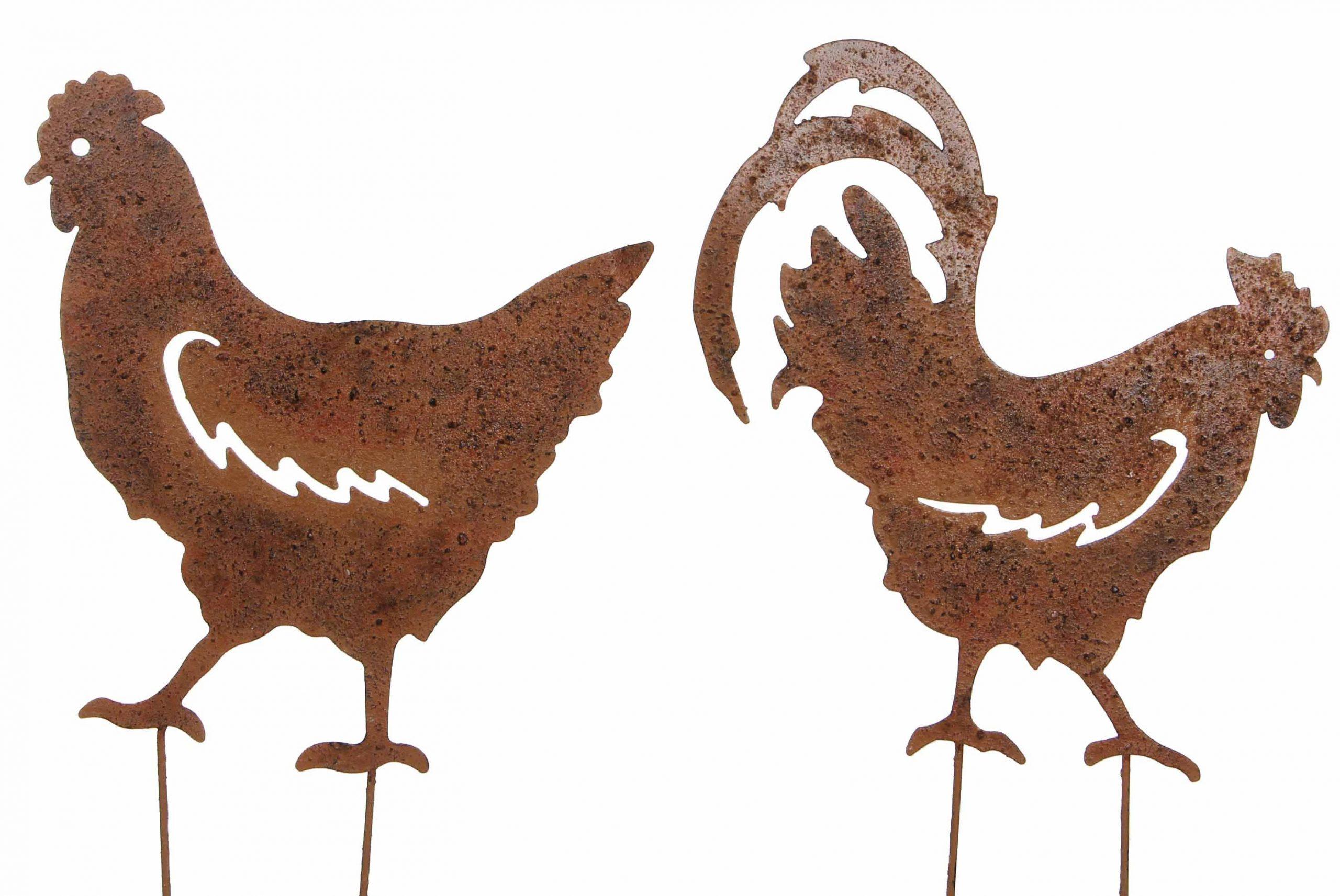 Couple Coq Et Poule Sur Pic Lot De 2 Statut De Jardin Plaque En Métal  Décoration À Piquer En Fer Marron 0,2X32X48Cm pour Statut De Jardin