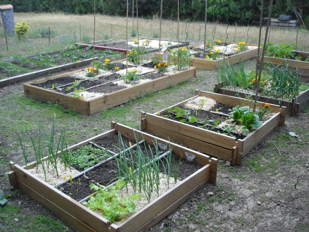 Création De Mon Potager En Carrés - Aiguilles Et Myrtilles serapportantà Jardin En Carre