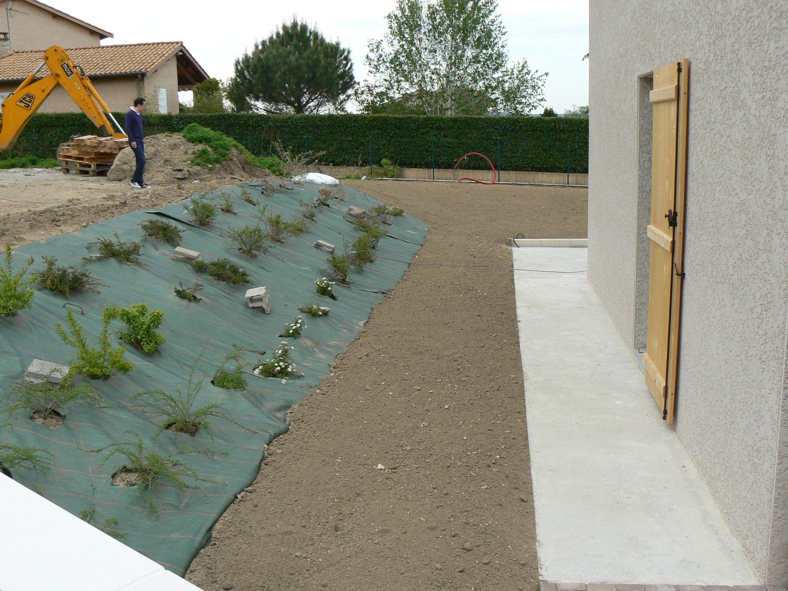 Création Du Jardin D'une Villa Neuve   Jardins Et Bassins encequiconcerne Plante Bassin De Jardin