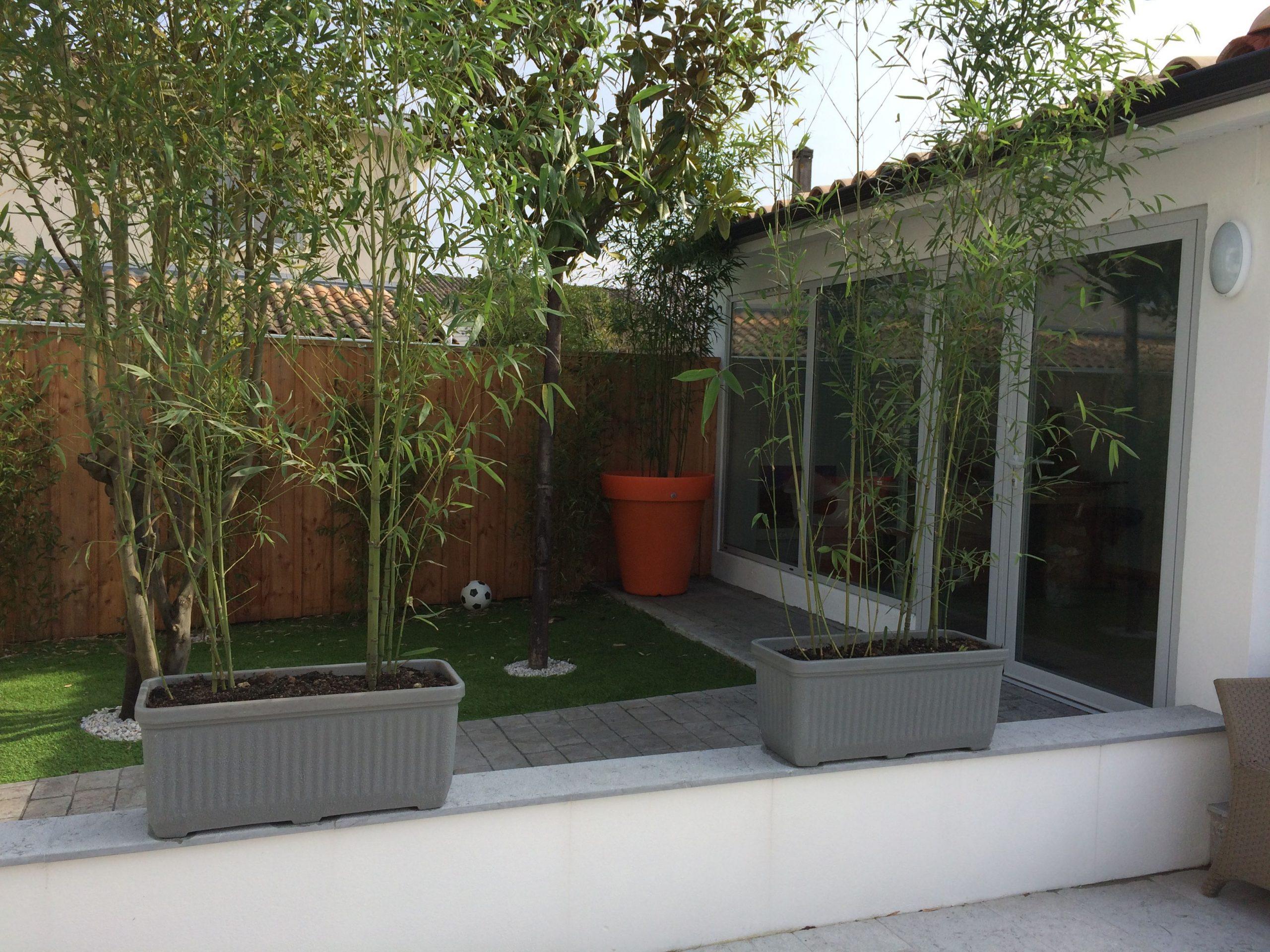 Création D'un Petit Jardin Sans Entretien Avec Du Gazon ... encequiconcerne Creation Petit Jardin
