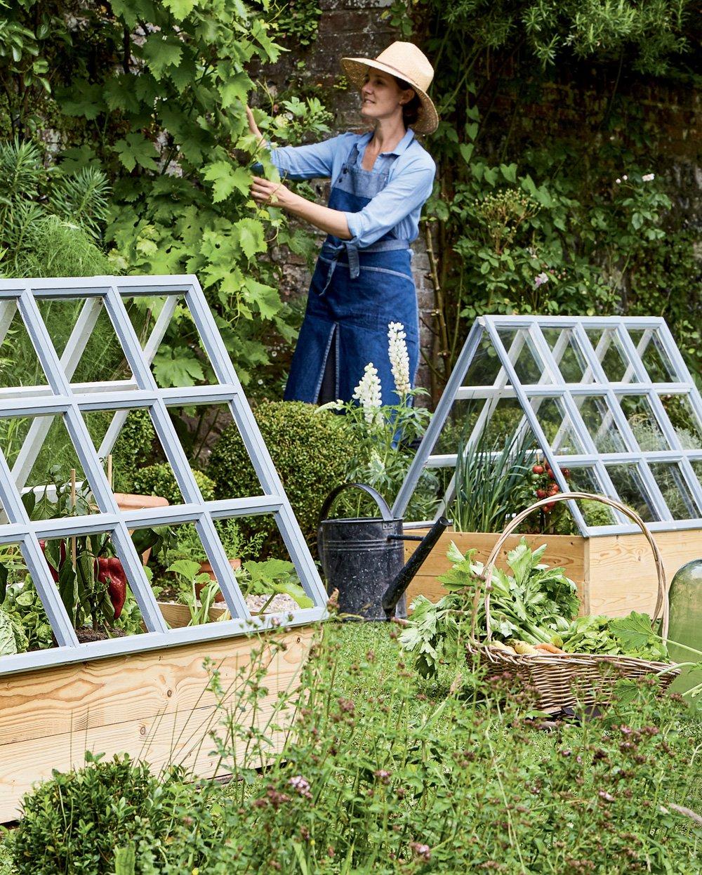 Créer Des Serres Pour Faire Pousser Les Tomates Dans Son ... intérieur Faire Sa Serre De Jardin Soi Meme