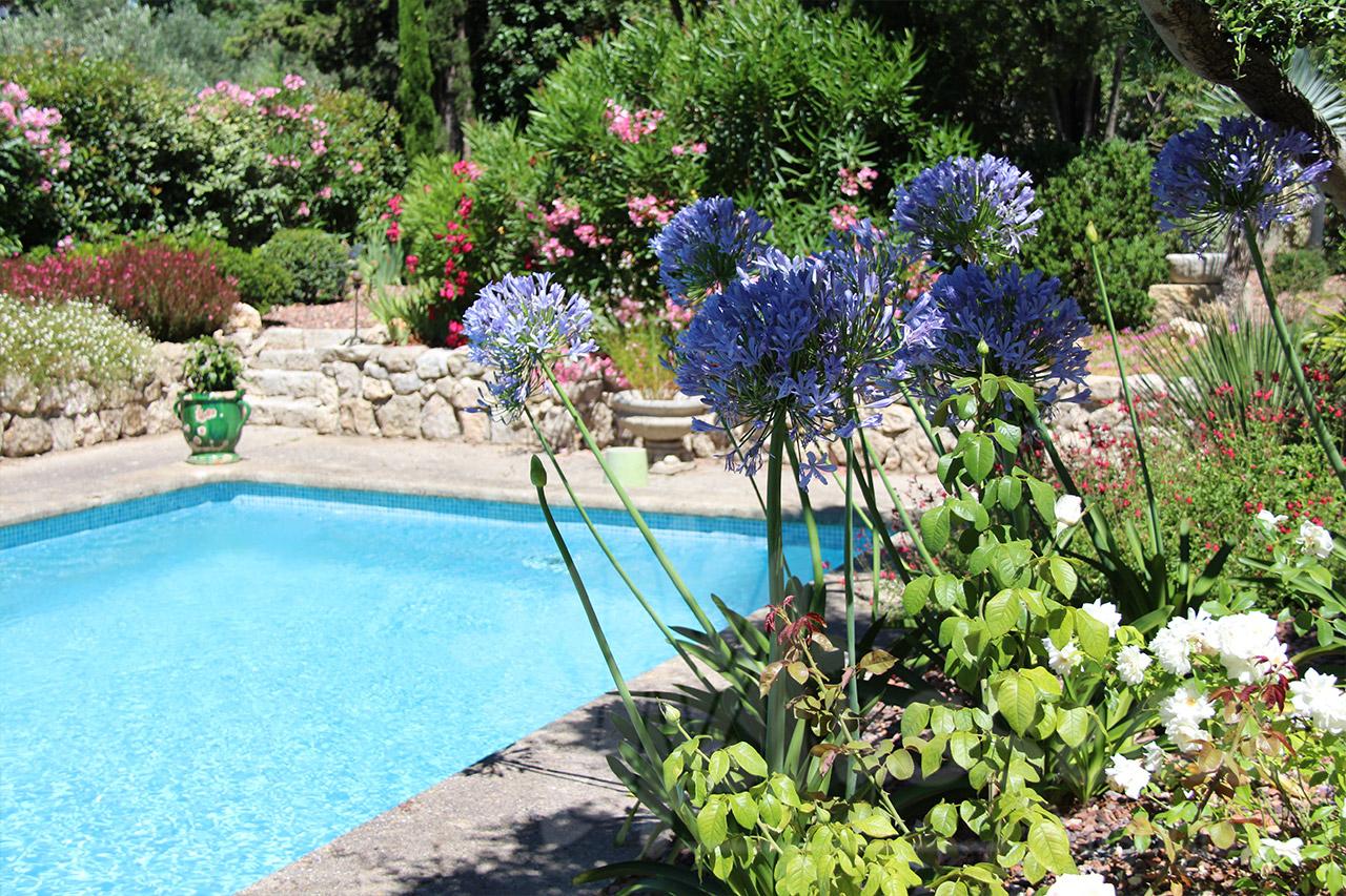 Créer Et Aménager Son Propre Jardin Méditerranéen avec Amenagement Petit Jardin Mediterraneen