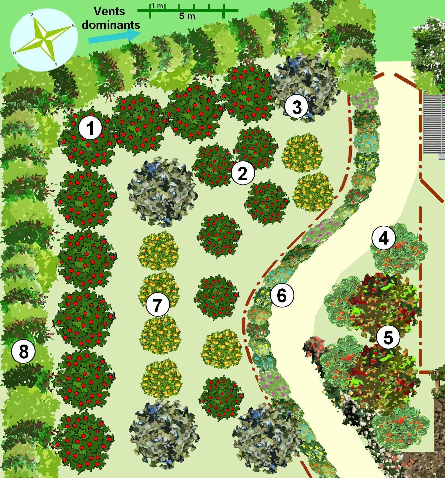 Créer Un Jardin En Permaculture - Plan ... à Plan Jardin Potager Bio