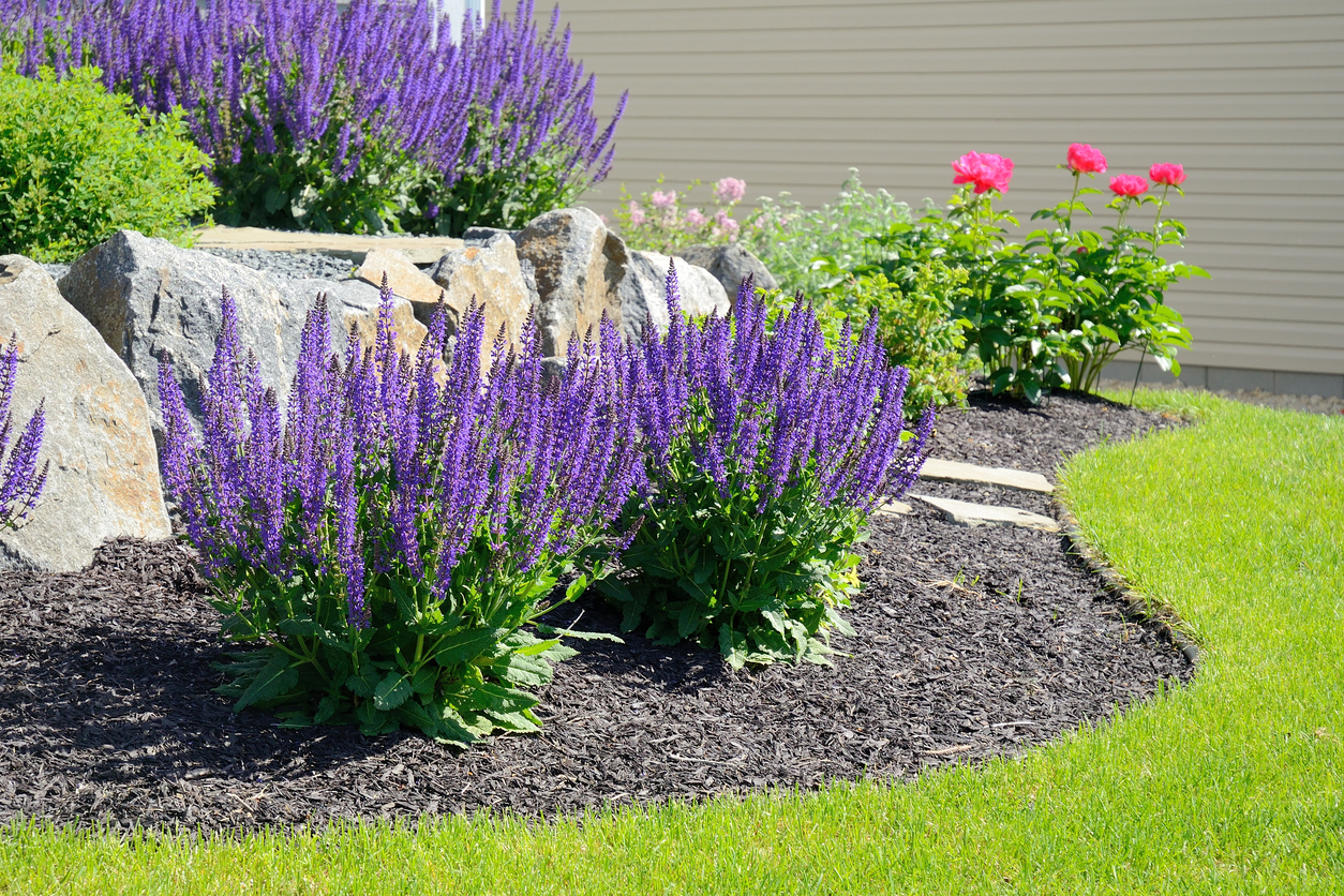 Créer Un Jardin Sec - Bricofamily destiné Creer Un Jardin Sec