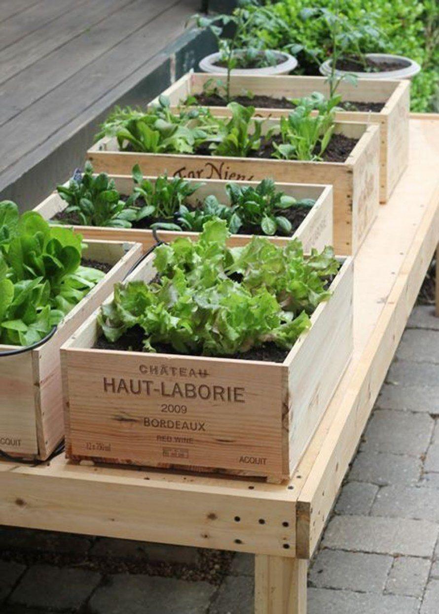 Créer Un Jardin Sur Le Balcon En 4 Leçons | Faire Un Potager ... concernant Faire Un Jardin Sur Son Balcon
