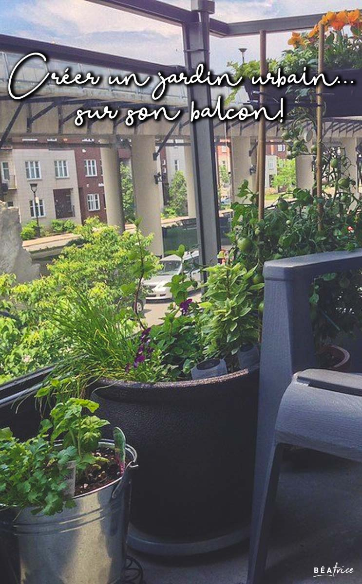Créer Un Jardin Urbain… Sur Son Balcon! | Béatrice tout Faire Un Jardin Sur Son Balcon