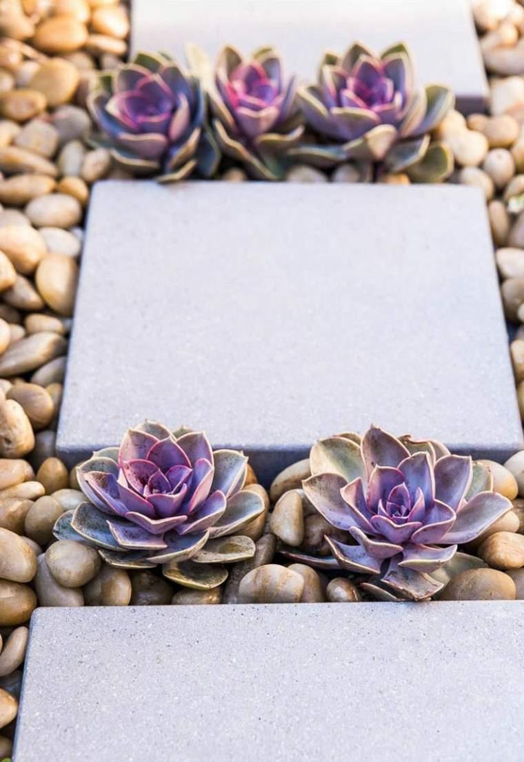 Créer Un Jardin Zen Réussi : 8 Astuces Et Conseils avec Creer Un Jardin Sec
