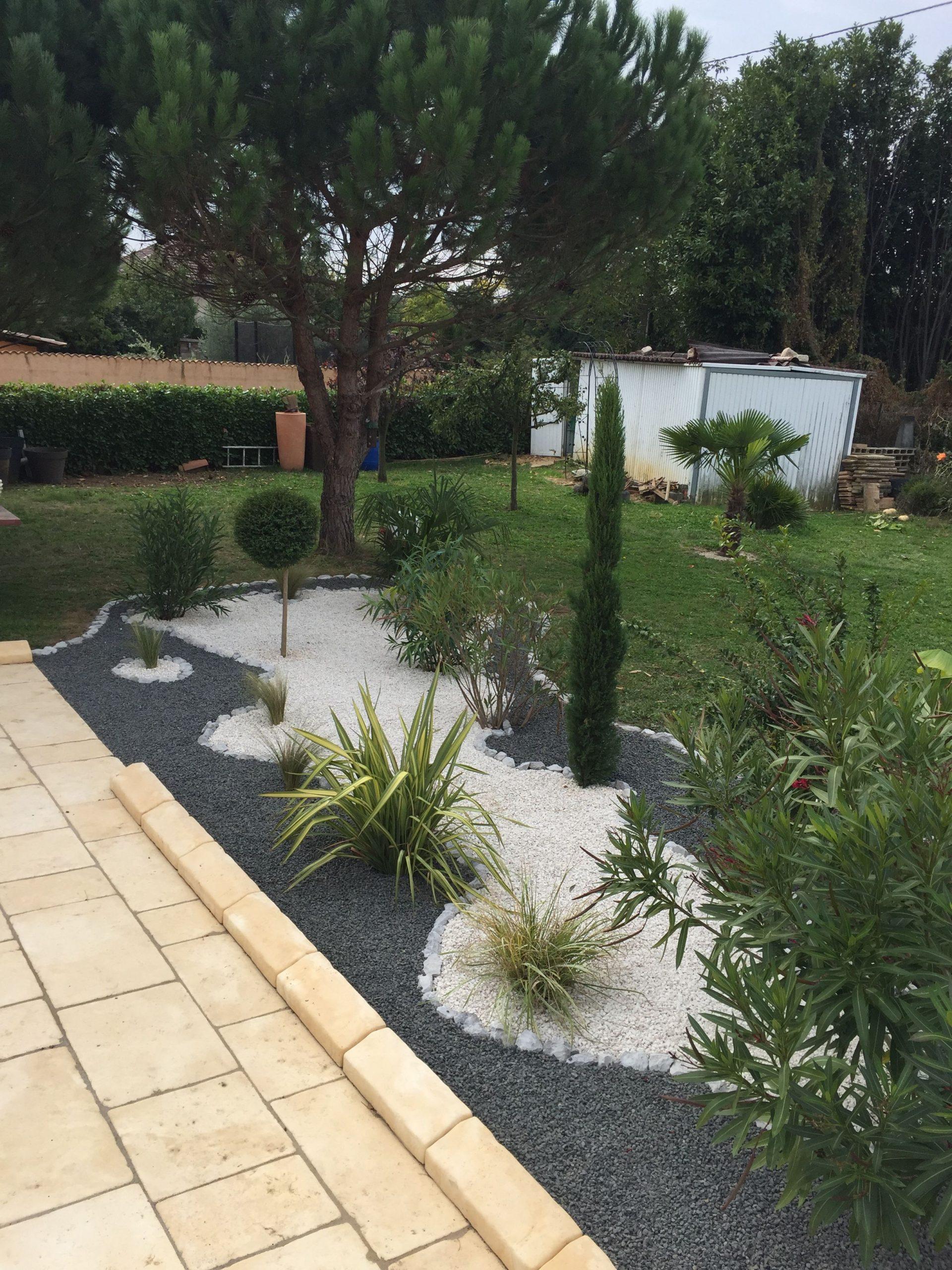 Creer Un Joli Massif Mineral Avec Cordyline Agapanthe Et ... concernant Idee Amenagement Jardin Devant Maison