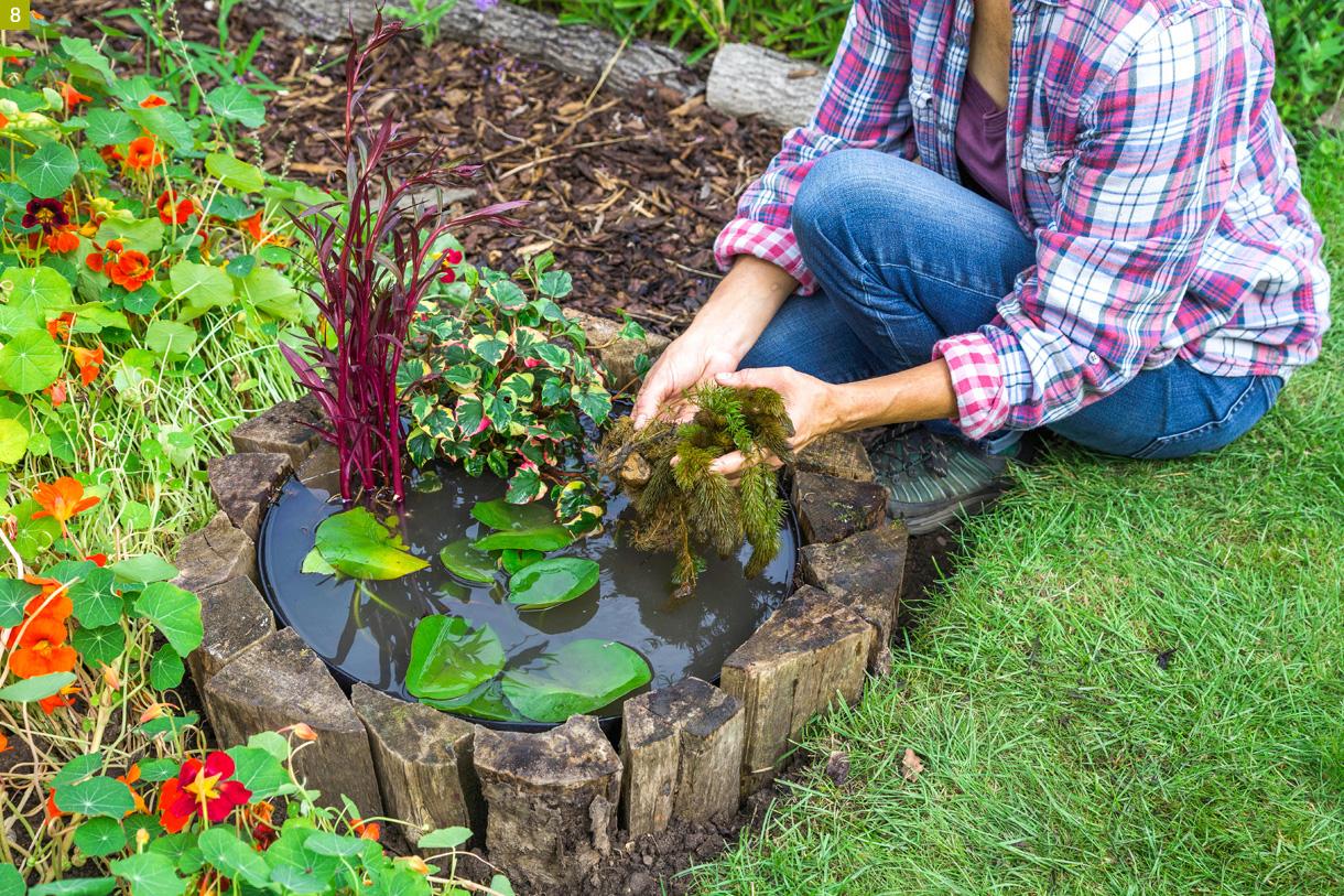 Créer Un Mini-Bassin En 2 Heures Chrono Dans Votre Jardin ... intérieur Petit Bassin Pour Jardin