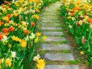 Créer Une Allée De Jardin : Quelques Conseils Pour Bien ... intérieur Création Allée De Jardin