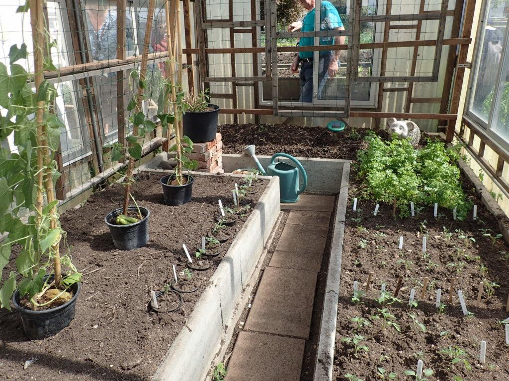 Cultiver Sous Abri 21/04/18 – Pôle Maraîchage destiné Serre De Jardin D Occasion