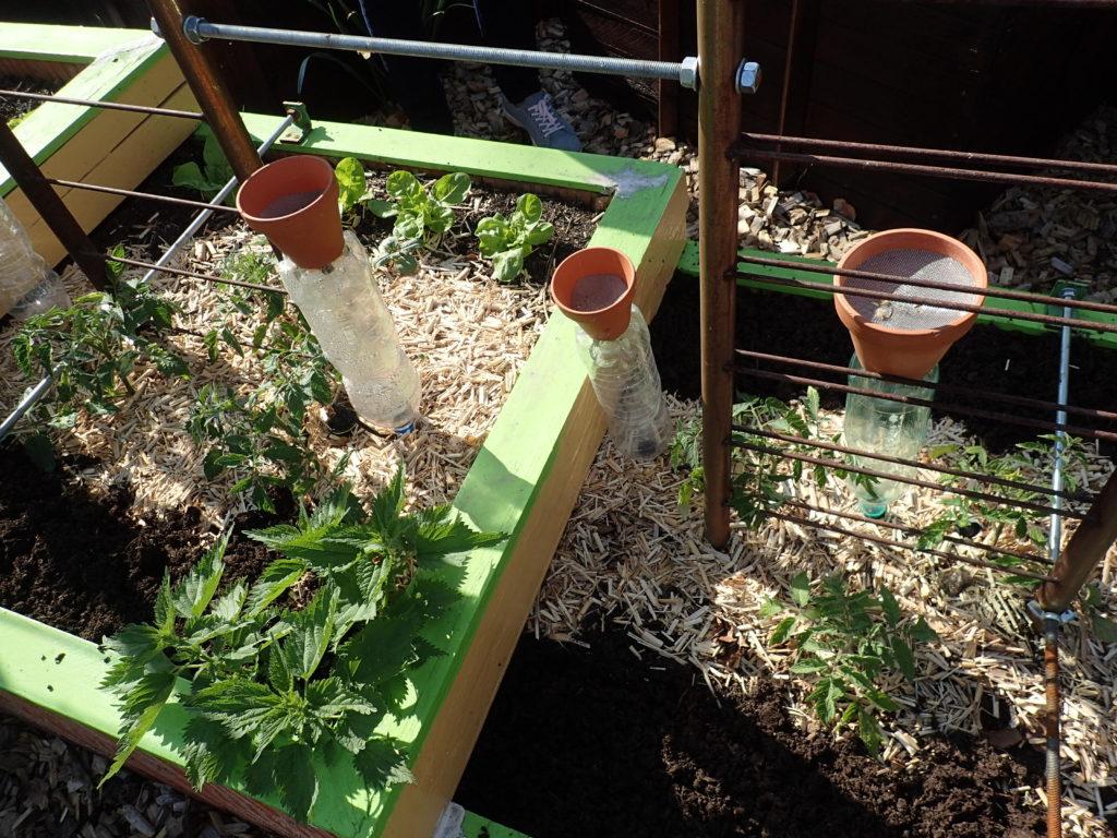 Cultiver Sous Abri 21/04/18 – Pôle Maraîchage pour Serre De Jardin D Occasion