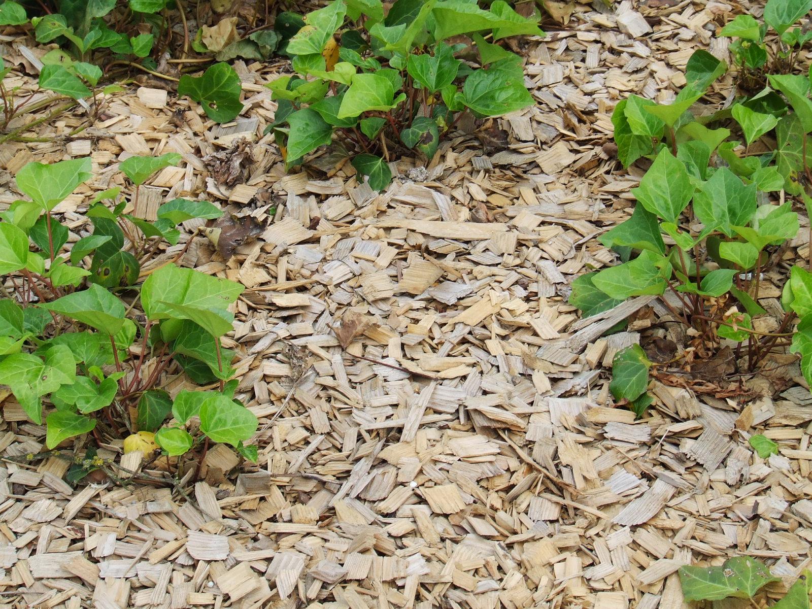 Déchets Verts, Humus, ... | Caue intérieur Copeaux De Bois Jardin