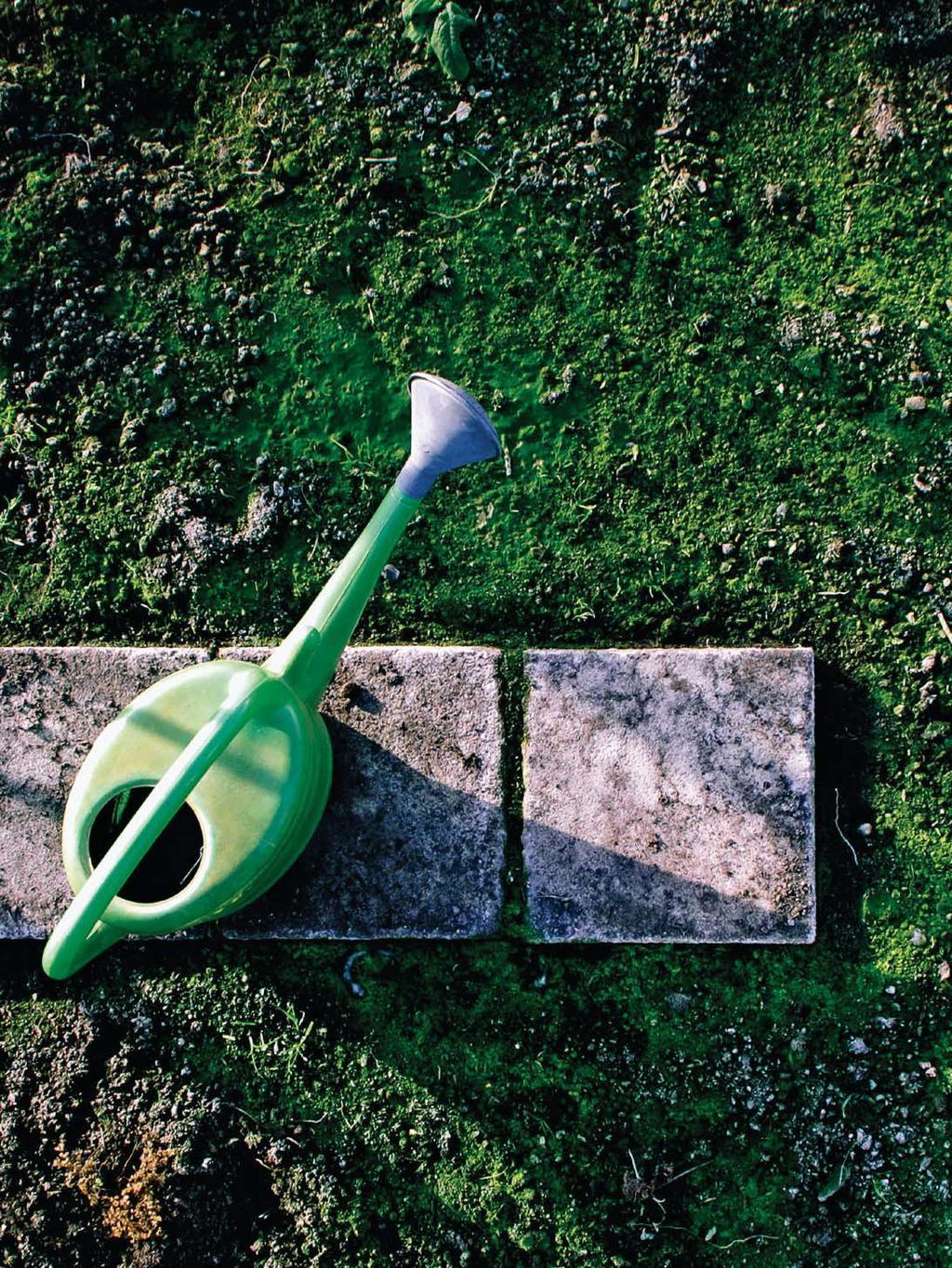 Deco Recup Minibassins Jardins Partagés Le Grand Come-Back ... destiné Incinérateur Jardin Leroy Merlin