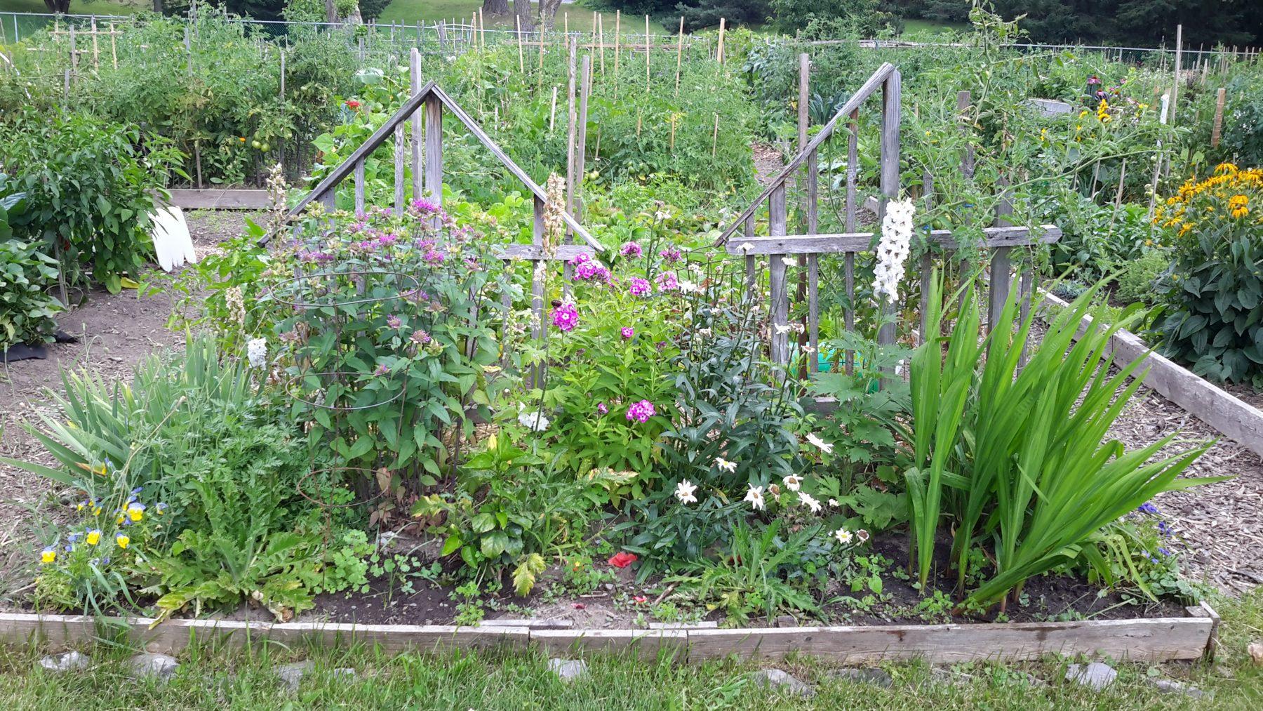 Démystifions Les Pratiques Du Jardinage Écologique ! - Ville ... pour Jardins Écologiques