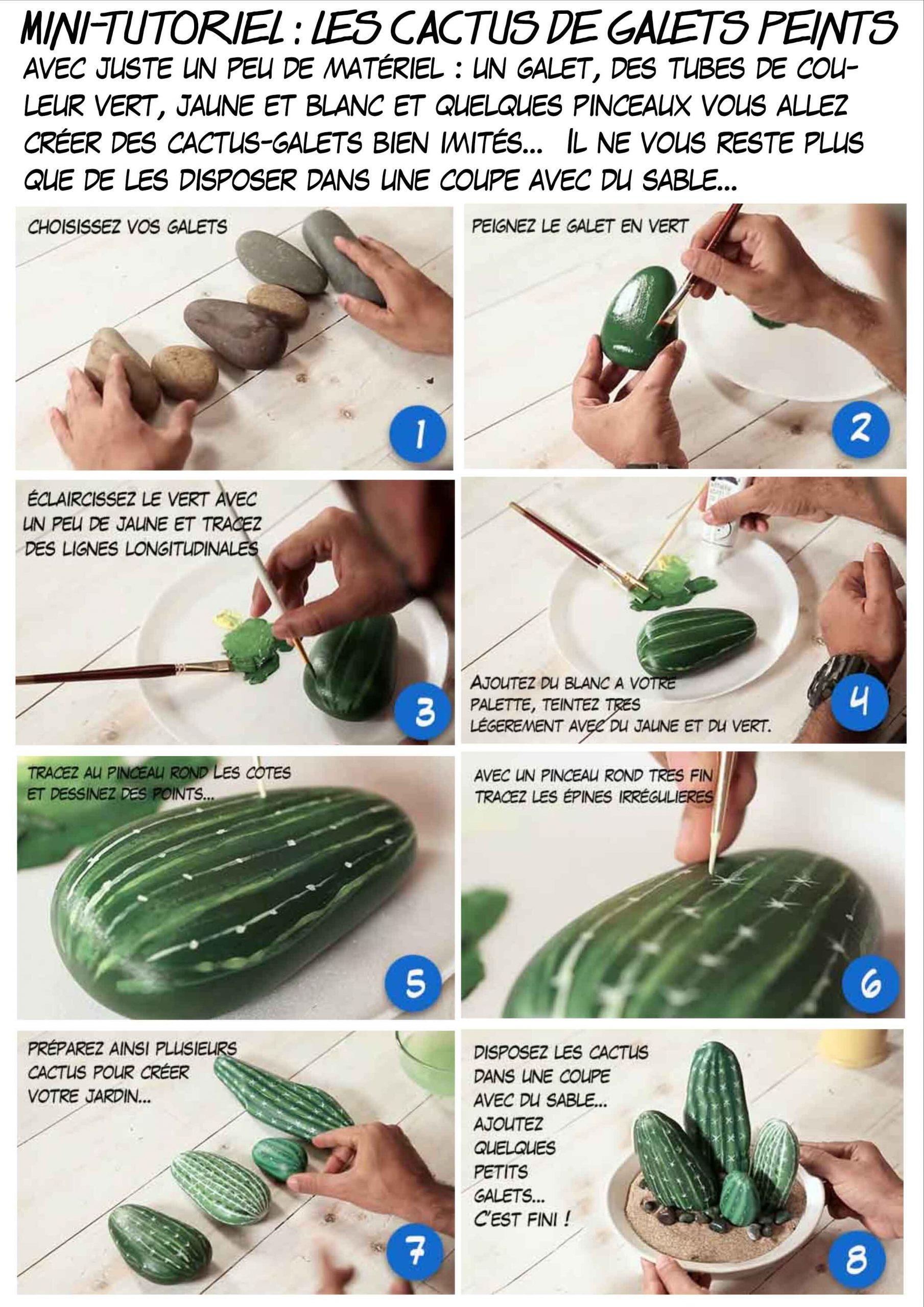 Des Cactus En Galets Peints, Painted Cactus On Pebble pour Modele De Jardin Avec Galets