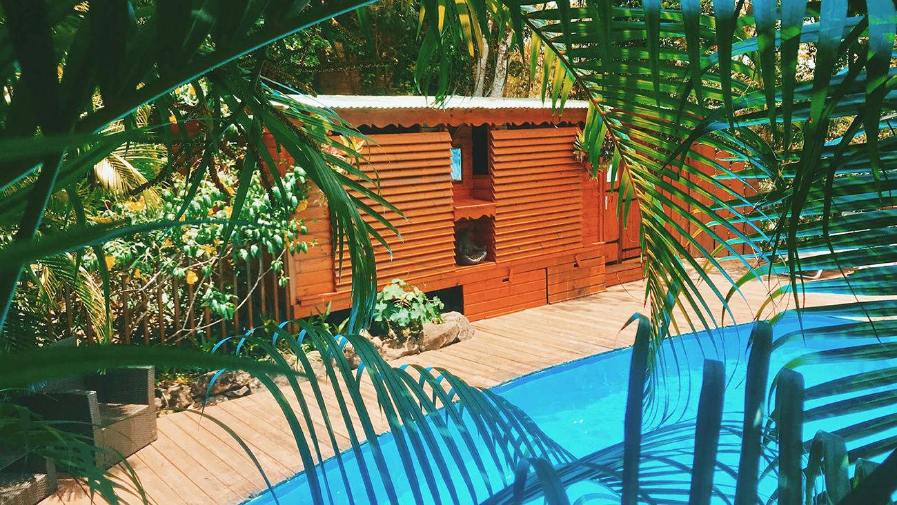Des Vacances Insolites En Guadeloupe ! tout Au Jardin Des Colibris