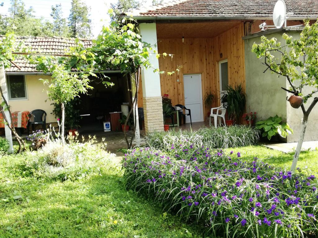Divna Guest House (Bulgaristan Krushuna) - Booking avec Bache Pour Salon De Jardin