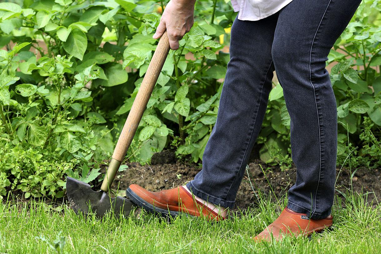 Dresse Bordure : Apprendre À L'utiliser En 1 Minute ... destiné Faire Ses Bordures De Jardin