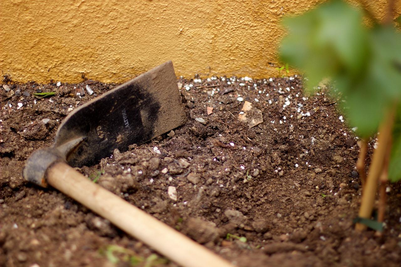 Du Carbonate De Chaux Pour Votre Jardin – Blog-Maison concernant Chaux Pour Jardin