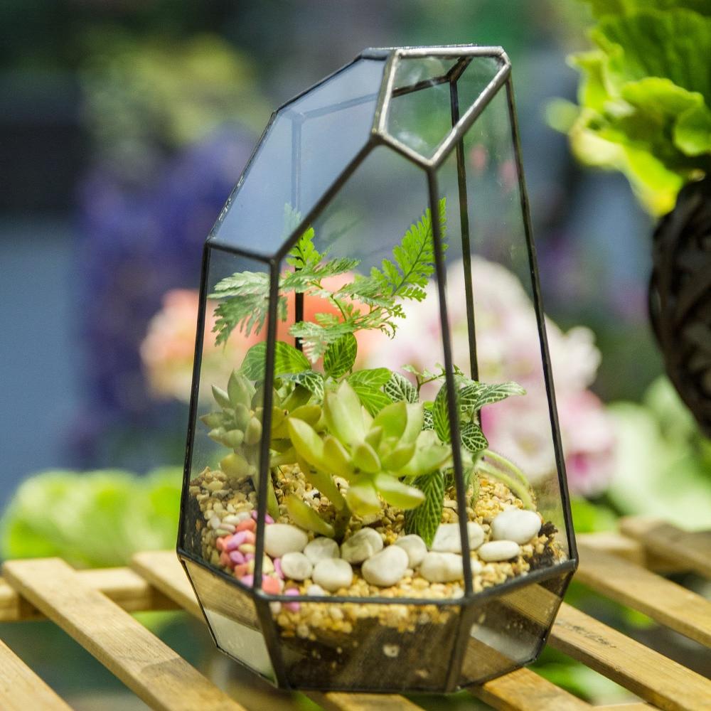 €17.34 |Verre Terrarium Jardinière Jardin Table Miniature Irrégulière  Géométrique Verre Pot De Fleur Pour Plantes Succulentes Mousse Fougères  Plante ... à Cloche En Verre Jardin