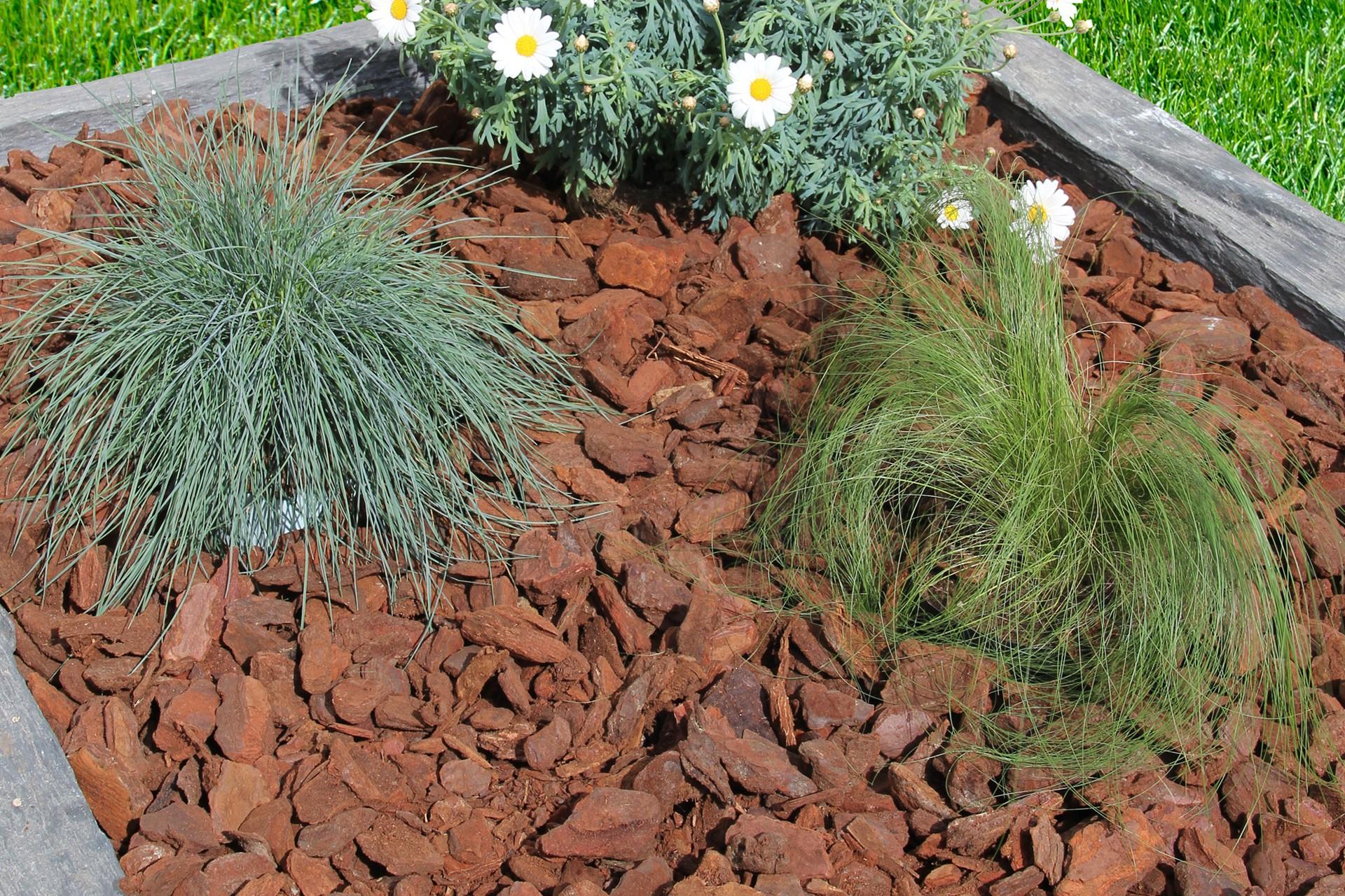 Ecorce De Pin Décorative - Paillage - Decovrac concernant Ecorces Jardin