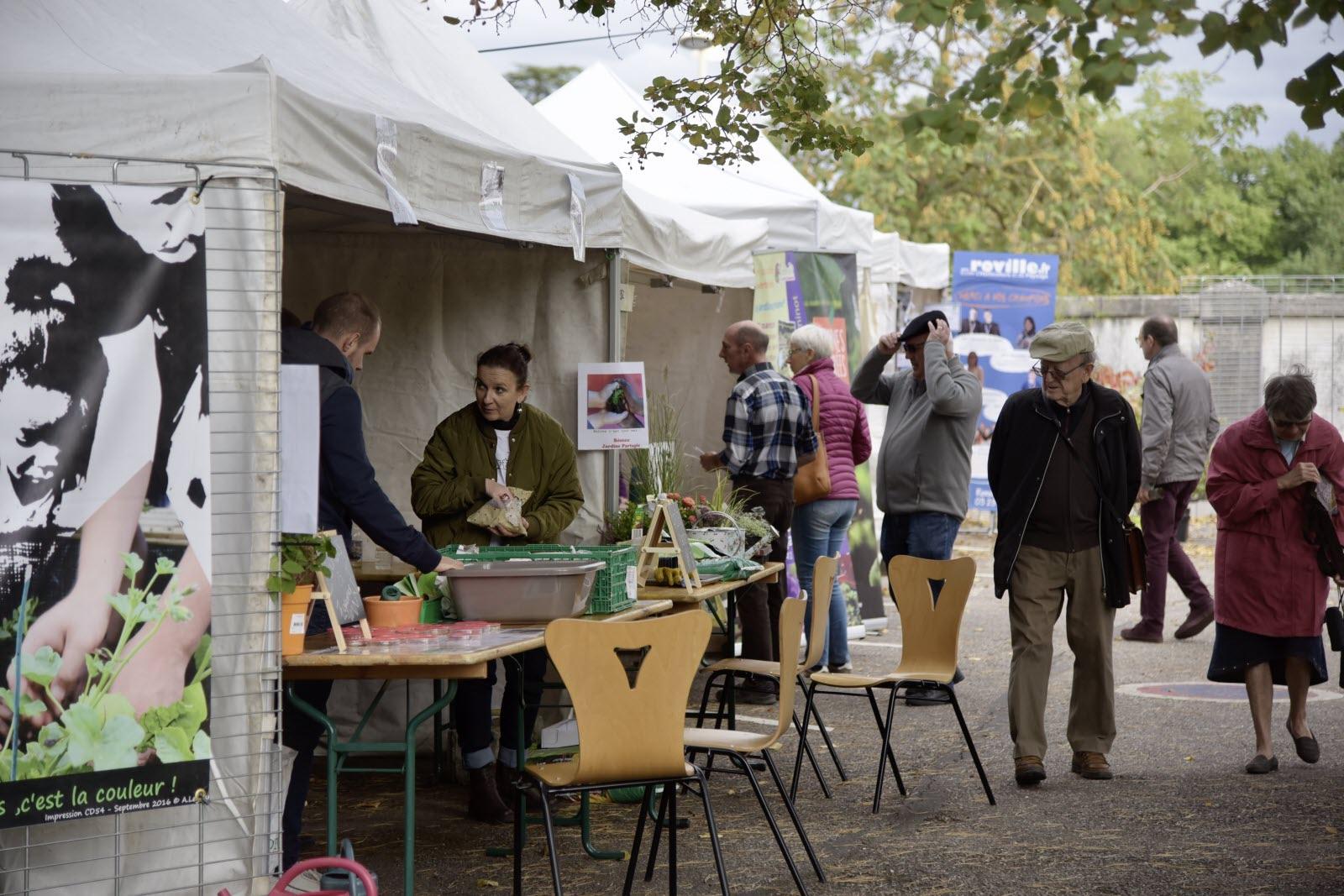 Edition Nancy Et Agglomération | Quatre Conseils De ... tout Jardiner Pour Les Nuls