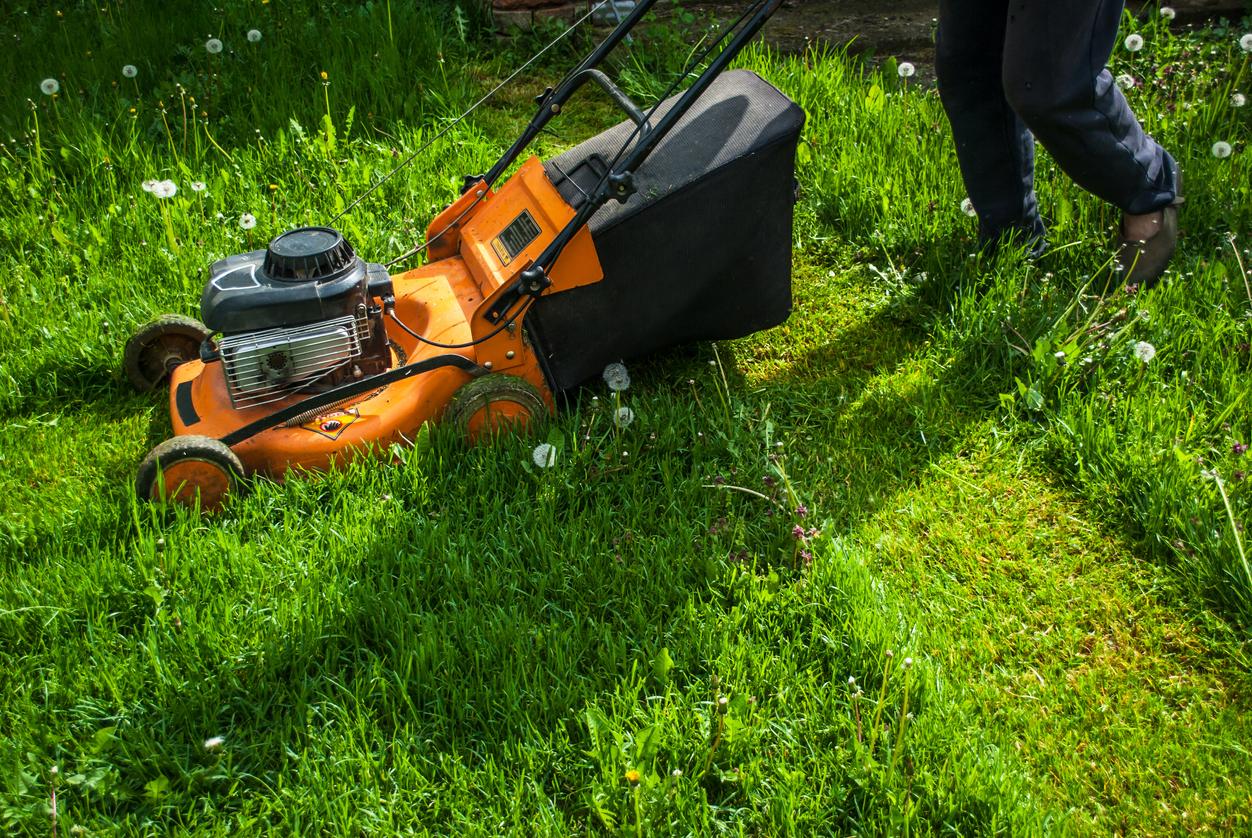 Eliminer Les Tiques Du Jardin Sans Pesticides | Santé Magazine serapportantà Bruler Feuilles Jardin