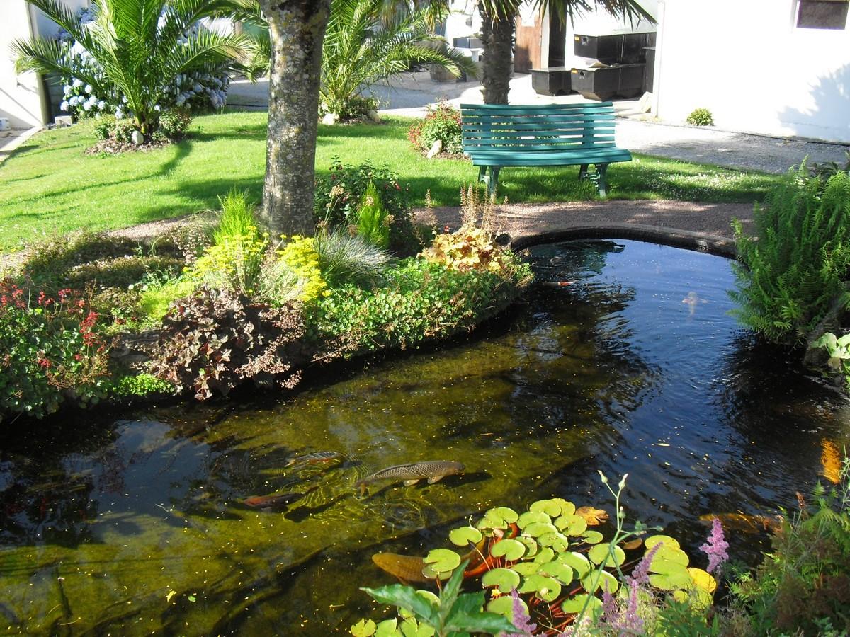 Embellir Son Extérieur Grâce À Un Bassin De Jardin avec Bac Poisson Jardin