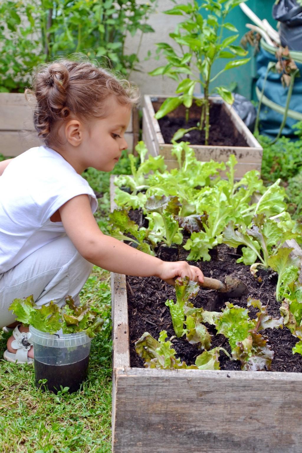 En Avril, Au Jardin Prenons Racine   Côté Brest concernant Arche Jardin Jardiland