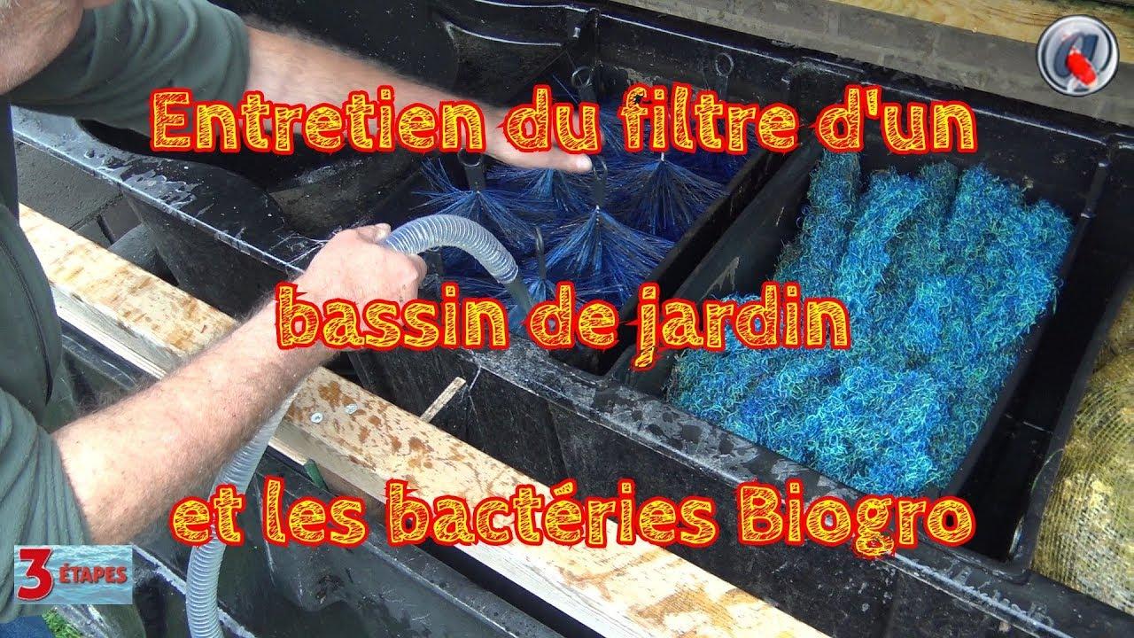 Entretien Du Filtre D'un Bassin De Jardin Et Les Bactéries Biogro dedans Entretien D Un Bassin De Jardin