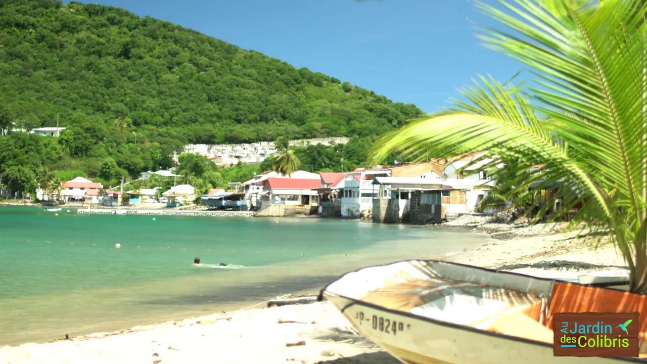 Envolez Vous Au Pays Des Colibris ! ... Au Jardin Des Colibris Deshaies  Guadeloupe avec Au Jardin Des Colibris