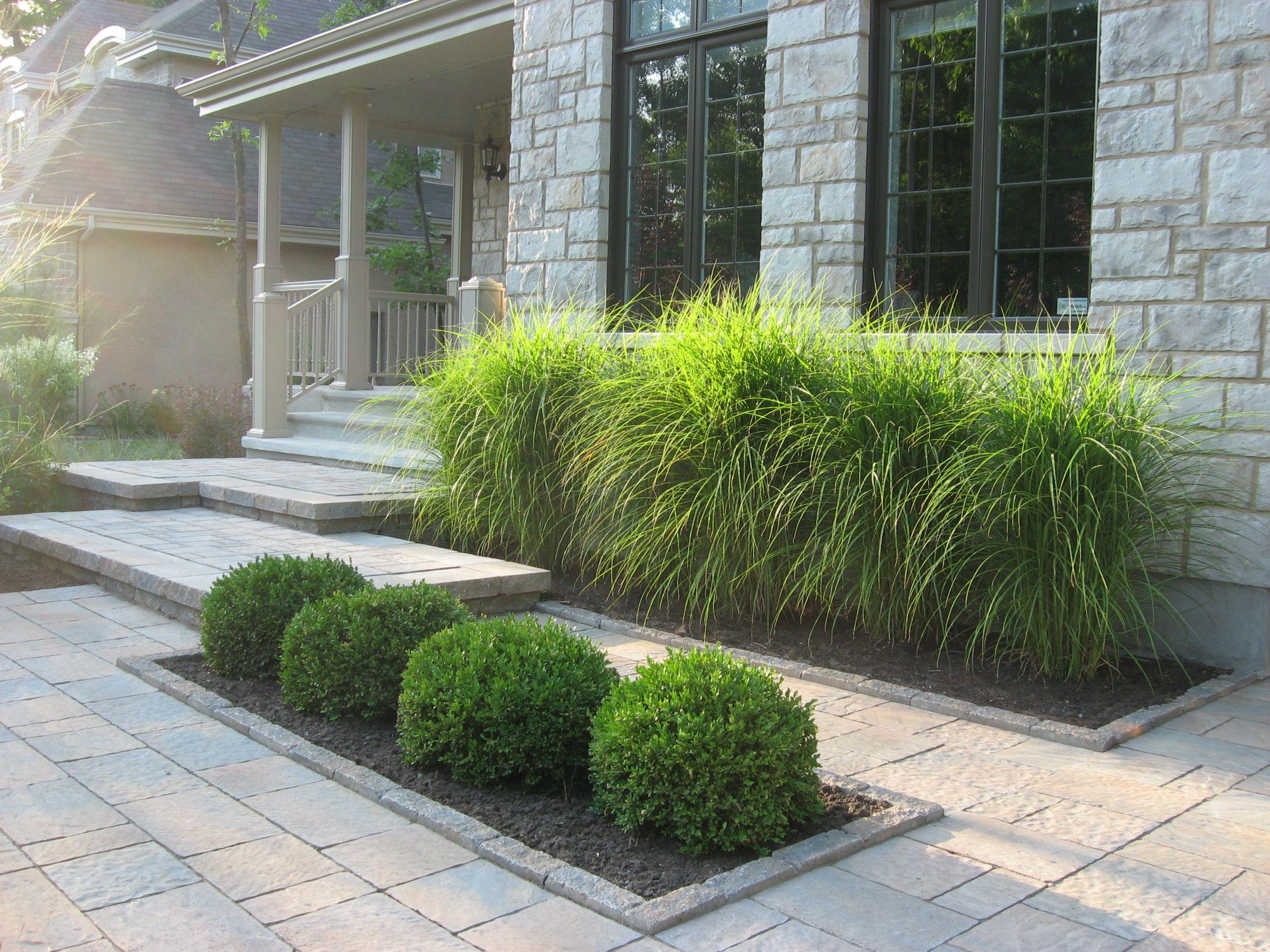 Épinglé Par Dancom Sur Terrasses   Aménagement Jardin Devant ... tout Amenagement Jardin Avec Graminees